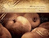 Scripture Art - Inspirational Art - Bible Verse - Christian Art - Fall Home Decor - Kitchen Decor - Fruit - WORD LIKE APPLES - Proverbs 25