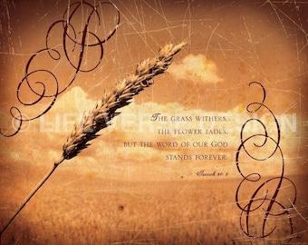 Bible Verse Artwork - Scripture Art - WORD OF GOD - Isaiah 40 - Christian Gift - Scripture Photography