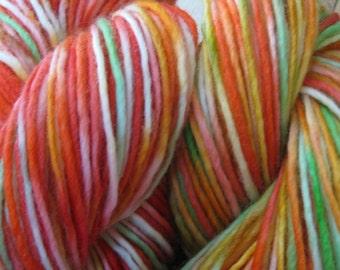 Woolpops Indian Summer Yarn Set