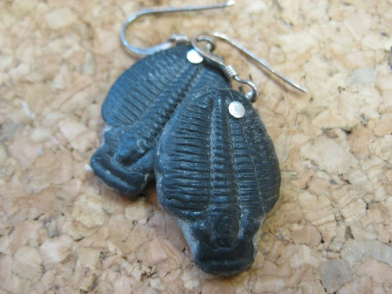 GMD Large Trilobite Earrings