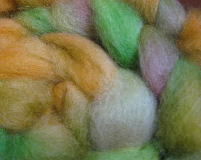 Woolpops First Turning Hand Dyed Roving