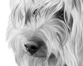 Original Art, ACEO, Yorkshire Terrier, Yorkie, Dog