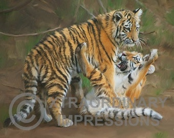 Original Art, ACEO, Tiger Cubs Playing, Pinned