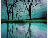 Night sky,11x17inches, Michigan photography, Original, Lake House decor, tree art, Fine art photograph, tree art
