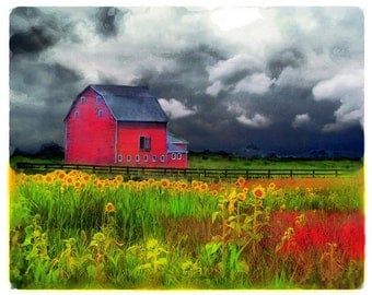 The red barn , 8x10, Original, Landscape, Fine Art photograph, Country home decor, storm clouds, Sunflowers, nature photography