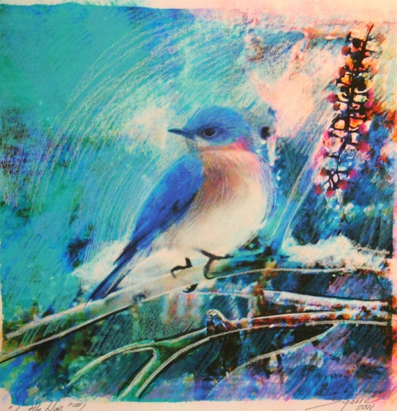 Little blue, 10x10, Original Signed, Fine Art altered photograph, Blue birds, nature decor, blue decor, birds, home decor, cottage chic