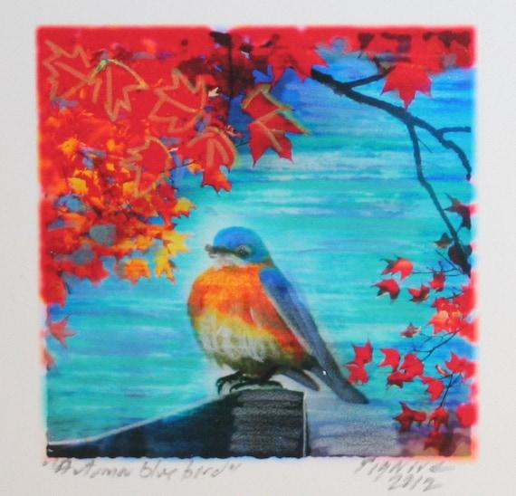 Autumn Bluebird, Tiny Mini 1.75 inches square, Miniature Fine Art photograph, Home decor