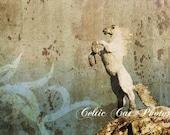 Irish Photography Ireland Celtic War Horse Photo Freedom 5 x 7 Fine Art On Metallic Paper