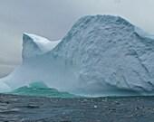 Canada Photography Landscape Iceberg Nature Fine Art  Newfoundland Off L'Anse Aux Meadows Light Blue Teal  5 x 7 Photograph Print