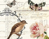 Art Print Botanical Collage digital vintage ledger French bird butterflies floral