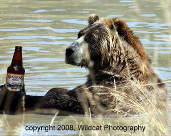 The Cool Beer Bear Photograph