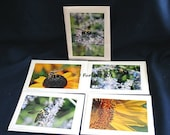 Set of 5 bees and flowers photo note cards