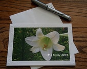 White Easter Lily greeting note card 5x7