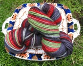 Hand dyed, hand painted, worsted weight wool yarn - Izod