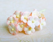 Two Tone Soft Peach/ Pink & Yellow 2 Layer Paper Flowers - 10 Stalks