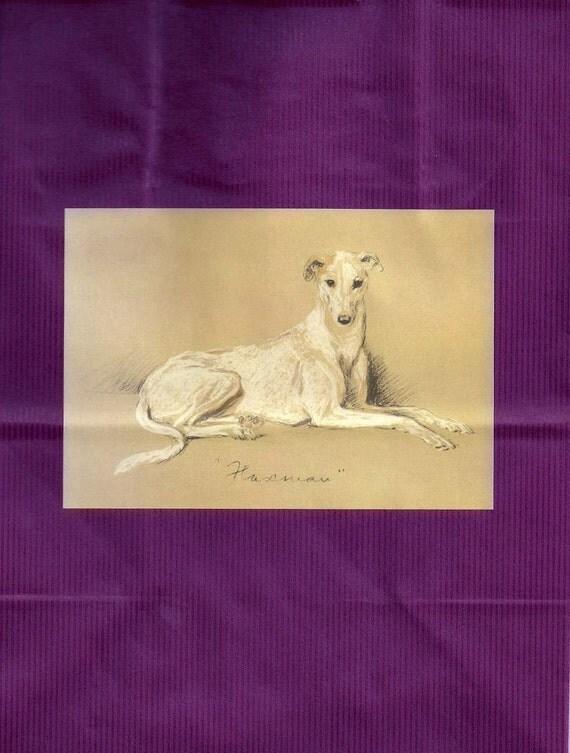 Greyhound Whippet Dog Vintage Drawing on Plum Gift Wrap Bag Size Medium with Tissue