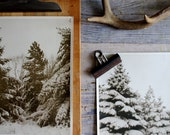 Vintage Winter Photograph