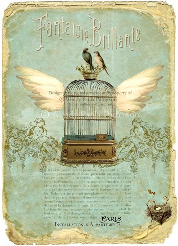 French Vintage Bird Cage Art Print Paris Apartment Flying Cage Installation D Appartements
