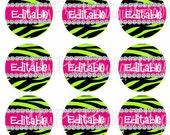 4x6 - EDITABLE PDF - Instant Download - BLING Lime Green Zebra Diamond Design - Soooo Chic - Editable Digital Bottlecap Image Collage