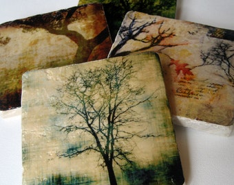 Stone Coasters - Rooted in Time set of 4