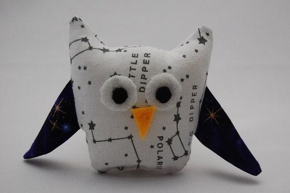 Dipper the Tiny Owl