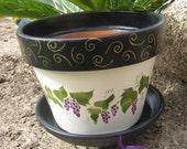 Flower Pot ...Harvest, Grapes & Wine