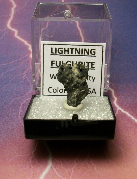 WISH BONE Lightning Fulgurite With Branching Y And Triple Blow Holes In Specimen Box From Colorado U.S.A.