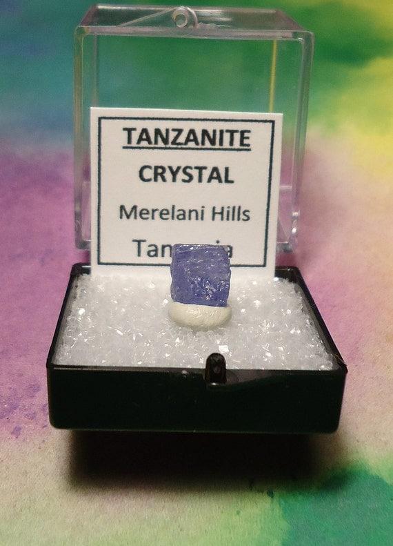 TANZANITE Natural Gemstone Crystal In Perky Mineral Specimen Box From Tanzania