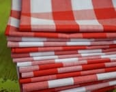 Red and White Gingham Check Cloth Napkins