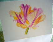 Note card Parrot Tulip