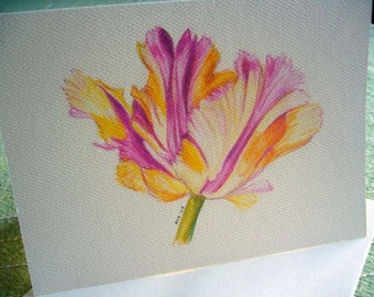 Parrot Tulips Note cards, stationary, notecard, stationery, Set of 6