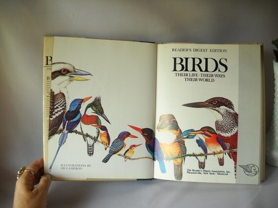 Vintage Book Bird Book Illustrated Reference Book Reader's Digest Coffe Table Book 1982 Edition