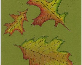 Autumn Folk Art, Oak Leaves, Fall, Print