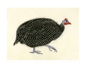 "Bird Art -  Geraldine the Guinea Fowl - 11.7"" X 8.3"" print - 4 for 3 SALE"