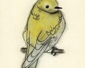 Illustration Bird art - Chilly Morning 4 for 3 SALE 4 X 6 print
