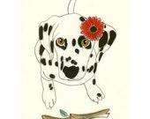 Dalmatian Dog Art  Dog Wall Art Dalmatian Art Decor   A Fetching invitation  4 X 6 dog illustration Print - 4 for 3 SALE