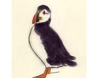 Bird wall art - Puffin bird art print -   Mr. P - 4 X 6 puffin print - 4 for 3 SALE