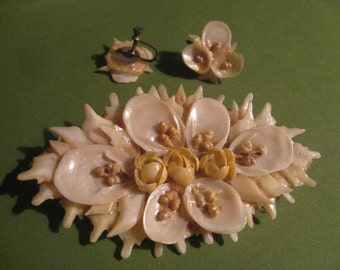 Antique Brooch and Earrings Set - Made of Seashells, Shipped to You in Their Original Celluloid Box