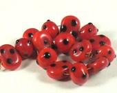 Ladybug bead set