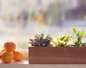 Modern Herb or Succulent Planter Box from Reclaimed Cedar