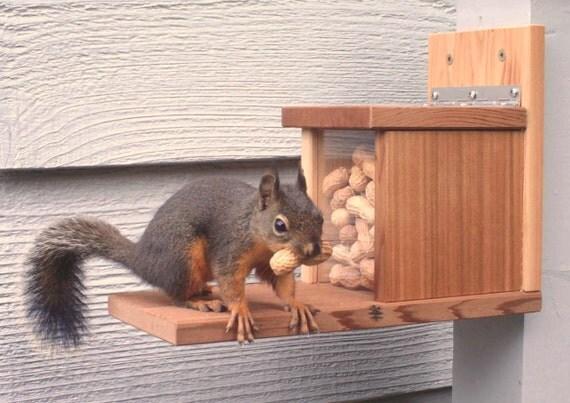Squirrel Feeder Snack Shack, Reclaimed Wood