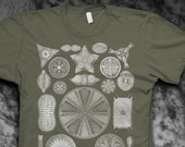 Diatoms Ernst Haeckel Mens Tshirt
