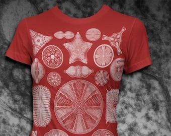 Diatoms Ernst Haeckel Womens Tshirt