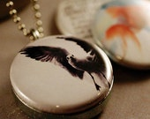 Seagull Locket Necklace, Goldfish Kisses, Prismes Photography - Magnetic Polarity Locket with 3 Interchangeable Lids