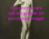 Old VINTAGE Antique EXOTIC NUDE Draped FRENCH MODEL Photo Reprint ...MATURE