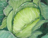 ACEO    Original Oil Painting    Cabbage     Vegetable