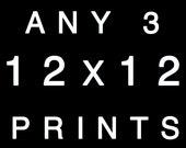 Ikea Ribba Frame 12x12 Art Prints for Ikea frames home decor three prints decorating ideas - Any 3