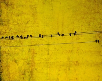 Bird on a wire, bird print, mustard yellow, metallic gold, black birds, crow, abstract, avian art, twitter, tweet, small art print