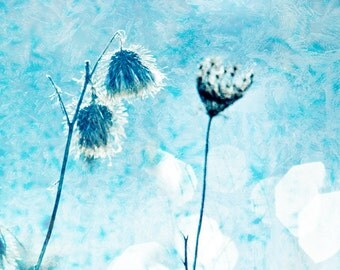 Winter white pastel blue ice frost bokeh river spearmint cold blue winter snow steel blue white simple - Winter Blue 8x8