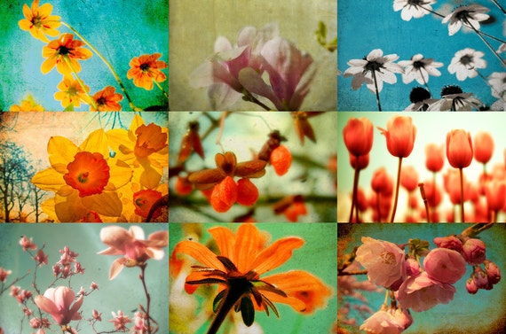 Floral prints flower photos nature images summer garden photos red tulip yellow daffodil pink magnolia Set of 9 5x7 prints